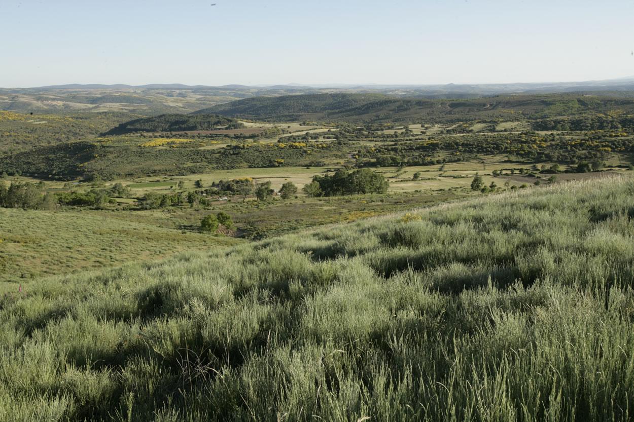 El entorno: Sierra Culebra