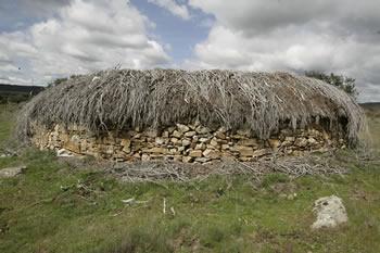 Construcción pastoril