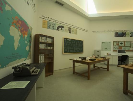 Sala 1. Vista general